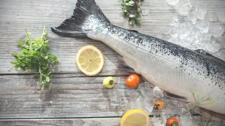 Fit mit Fisch