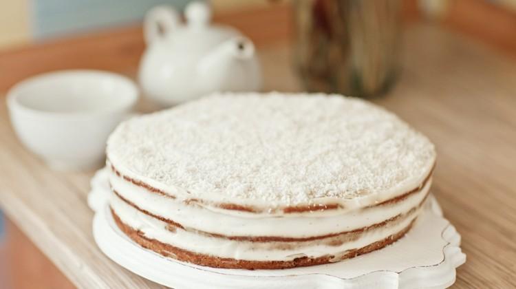 series of winter xmas coconut cake.